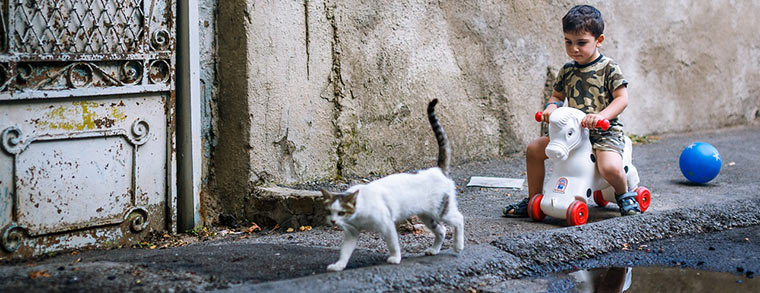Ein kleiner Junge entdeckt eine Katze auf der Straße