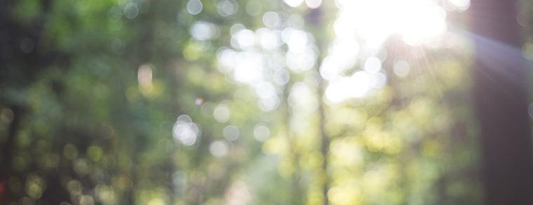 Verschwommenes Sehen gehört zu den Aura-Symptomen